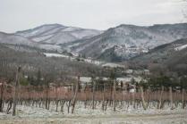 vertine neve febbraio 2021 (3)