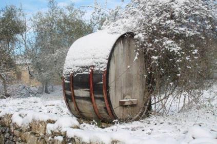 vertine neve febbraio 2021 (33)