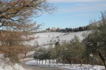 vertine neve febbraio 2021 (34)