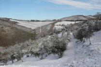 vertine neve febbraio 2021 (37)