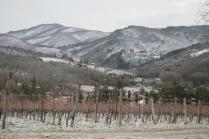 vertine neve febbraio 2021 (4)