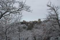 vertine neve febbraio 2021 (9)