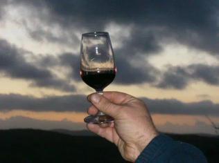 sangiovese bicchiere