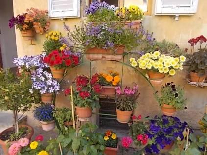 giardino piazza santo spirito siena (10)