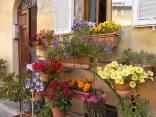giardino piazza santo spirito siena (12)