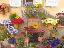 giardino piazza santo spirito siena (3)