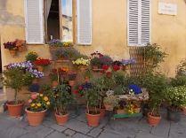 giardino piazza santo spirito siena (4)