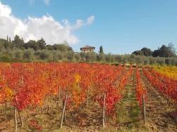 casa delle foglie rosse villa a sesta