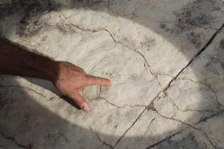 incisioni rupestri vertine luglio 2021 (16)