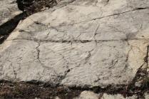 incisioni rupestri vertine luglio 2021 (2)