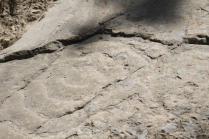 incisioni rupestri vertine luglio 2021 (3)