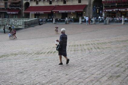 signora che getta pane bagnato ai piccioni piazza del campo (1)