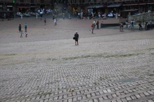 signora che getta pane bagnato ai piccioni piazza del campo (6)