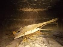 forno a legna vertine (3)