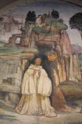 monte oliveto maggiore affreschi sodoma e luca signorelli (11)
