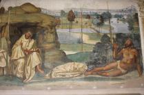 monte oliveto maggiore affreschi sodoma e luca signorelli (15)