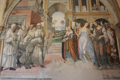 monte oliveto maggiore affreschi sodoma e luca signorelli (25)