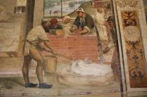 monte oliveto maggiore affreschi sodoma e luca signorelli (40)