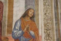 monte oliveto maggiore affreschi sodoma e luca signorelli (6)