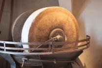 museo dell'olio grancia serre di rapolano (14)