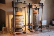 museo dell'olio grancia serre di rapolano (6)