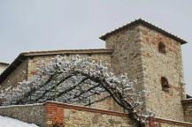 radda in chianti, provincia di siena (24)